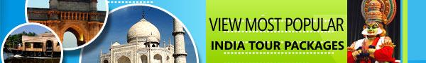 tours-to-india